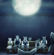 Hábitat de los lobos (Anime)