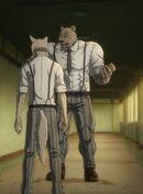 Riz musculoso (Anime)