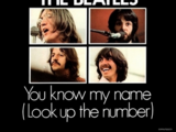 You Know My Name (Look Up the Number)