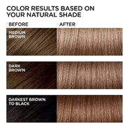 Hi-Lift Browns B61 Hi-Lift Cool Brown Before and After