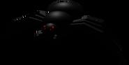 SpiderBSS