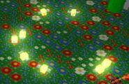 Fireflies CircleFormation