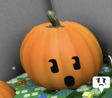 The pumpkin's face.jpeg