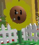 SunflowerSpitRolled2