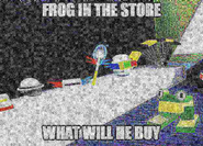 Image frog in the store bss