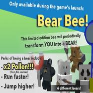 Bear bee purchase
