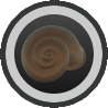 Bronze Shell Amulet.png