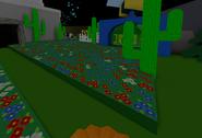 Cactus Field New
