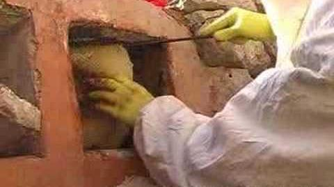 Apicoltura tradizionale - traditional beekeeping