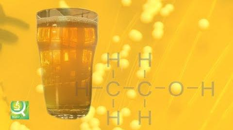 Science of Beer Tapping the Power of Brewer's Yeast
