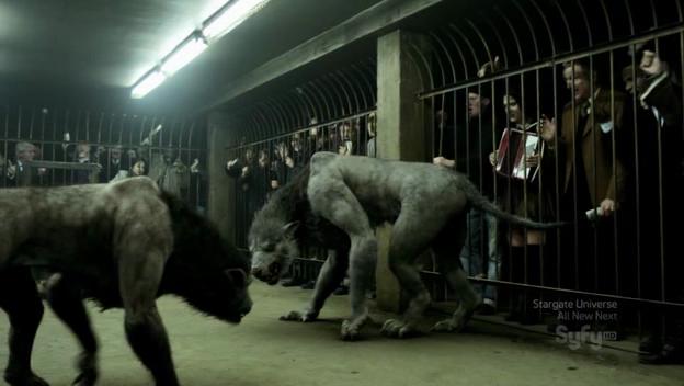 Werewolf Fights (Syfy)
