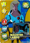 Magister Labrid Card