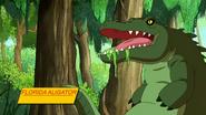 Gator Interview