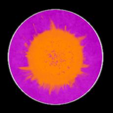 Swarm1symbol.png