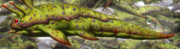 Slug Brains