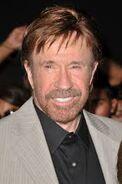 Chuck Norris2