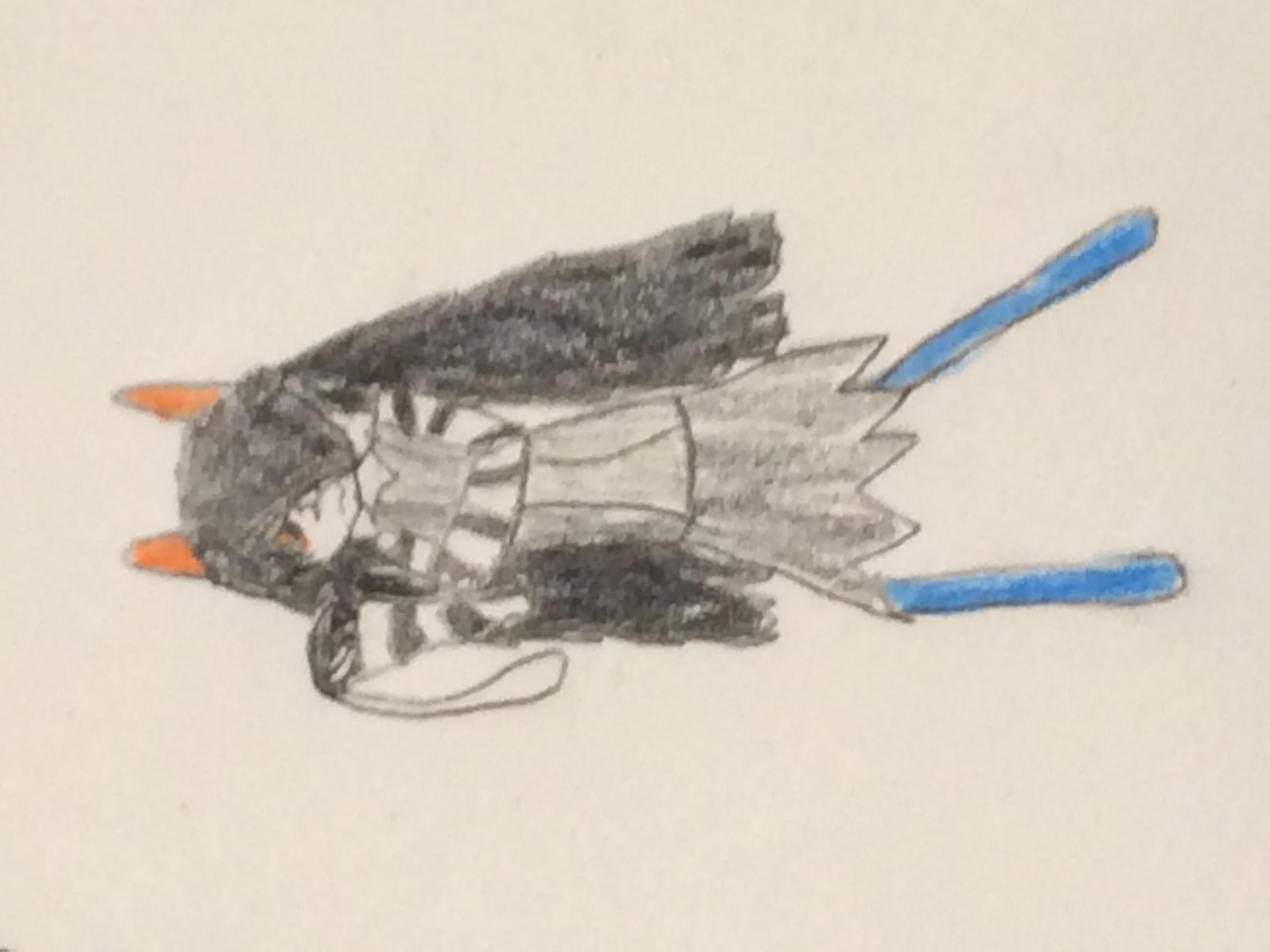 Mitsuki (Derwin 13)