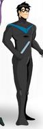 Nightwing (Limi reality)
