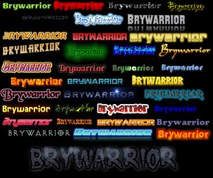 Brywarrior