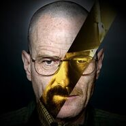 The-evolution-of-walter-white-1083584-OneByOne