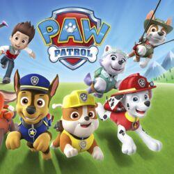 PAW Patrol (Seasons 2-4)