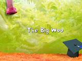 The Big Woo (Fish Hooks)
