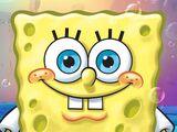 SpongeBob SquarePants (Seasons 1-5, 9-present)