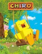 41852-chirorgb