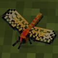 Yellow winged darter