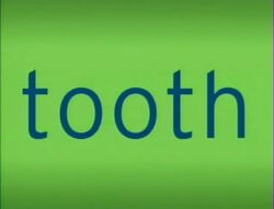 Tiger Words Tooth.jpg