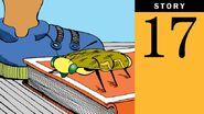 Story 17, Bug Alert