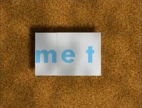 Rectangular Bug Word Morph met, net, nest.jpg