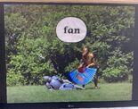 Gawain's Word Fan