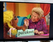 Dr. Ruth Wordheimer Parakeet 2