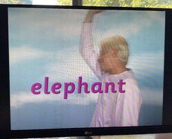 Fred Says Elephant 4.jpg
