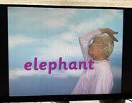 Fred Says Elephant 2