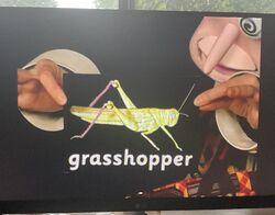 Arty Smartypants hop, hopping, hopped, hopper, grasshopper 3.jpg