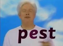 Fred.Est Words Rap