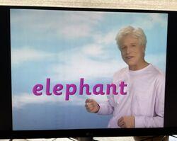 Fred Says Elephant.jpg