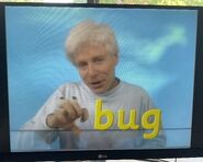 Fred Says Bug