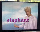 Fred Says Elephant 3