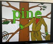 Silent E Pine