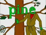 Silent E Pine 2