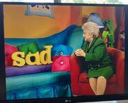 Dr. Ruth Wordheimer Sad, Glad 2