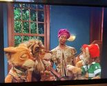 """The Lion family says """"Nah!"""""""