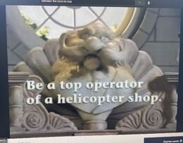 Be a top operator of a helicopter shop.jpg