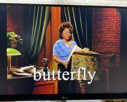 Ms. Denyce Graves Butterfly.jpg