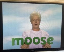 Fred Says Moose 3.jpg