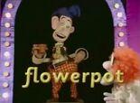 The Great Smartini (pot-flower-flowerpot)