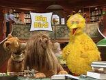 BigBirdCameo-TweetTweet